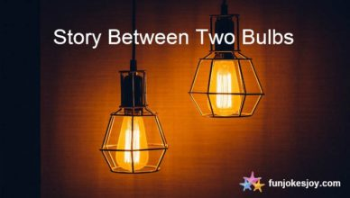The Light Bulb Story