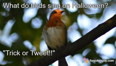 What do Halloween's Singing Birds Sing?