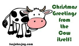 Christmas Greetings From The Cows Itself on Christmas!