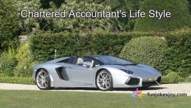 Chartered Accountant's Life Style