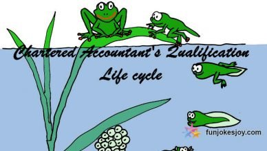 Chartered Accountant's Qualification Life cycle