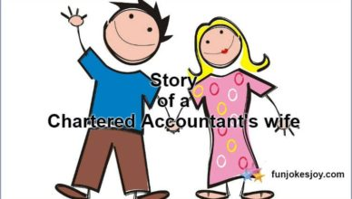 Story Of A Chartered Accountant's Wife