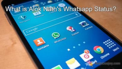 What is Alok Nath's Whatsapp Status?