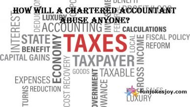 Chartered Accountant's Abuses