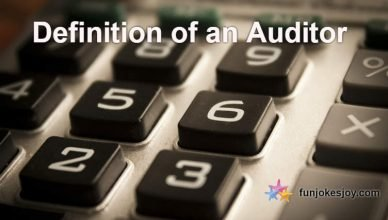 Definition of An Auditor