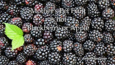 Mother's Pet Fruit is not Blackberry or Apple