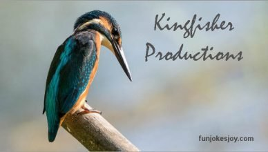 Kingfisher Productions!