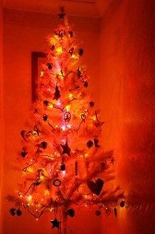 Christmas tree in the shade of colored light