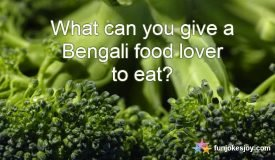 Food Lover Bengali's Can Eat Anything!