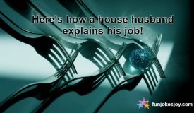 What is the Job of a House Husband?